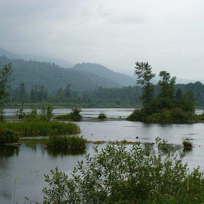 Cheam Lake