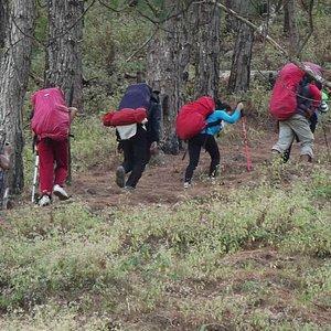Akiki Trail   Mount Pulag 2015   Killer Trail