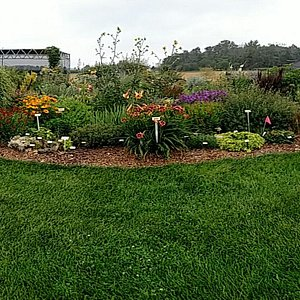 Greenhouses and display garden in panorama
