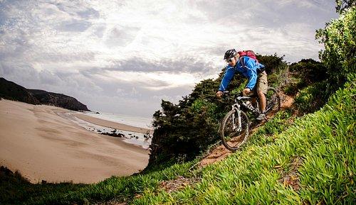 Sea view Cycling tours