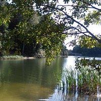 Jezioro Długie w Olsztynie