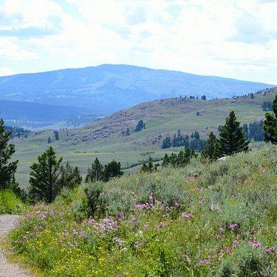Slough Creek Hike