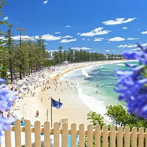 Manly Beach. Swimming, Surfing, Cafes
