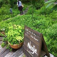 Nadjaの庭