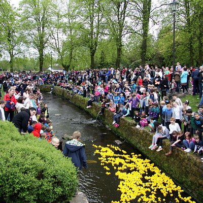 The annual duck race in the burn that runs through the park.