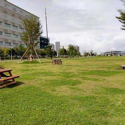 公園景色1