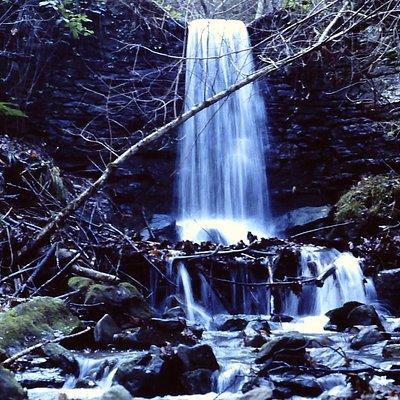 La cascatella del bosco