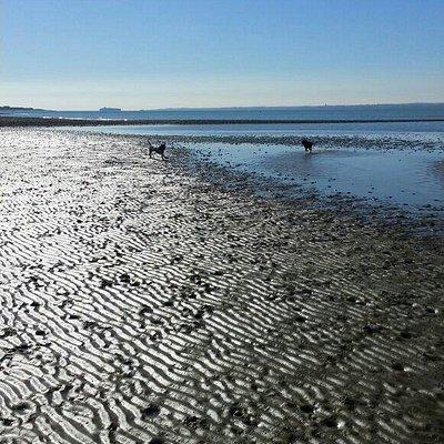 Lee On Solent Beach