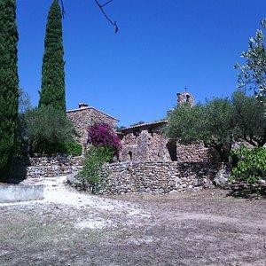 Pépiole : cyprés, oliviers, bougainvillier