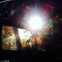 la locandina di notte