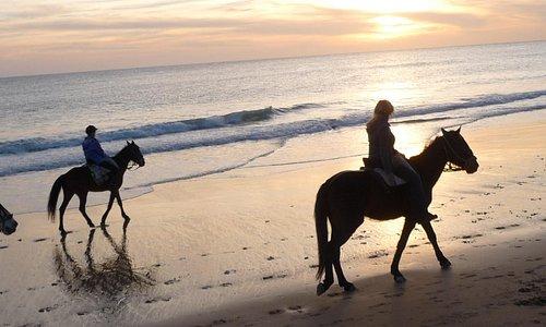 Reiten zum Sonnenuntergang am Kap Trafalgar