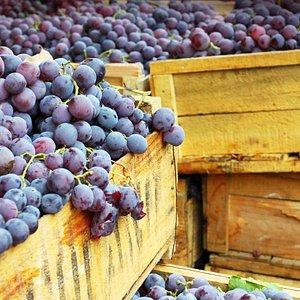 Spainish Berries