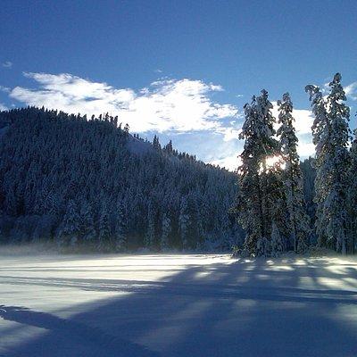 Sunshine over Plain Valley Nordic Ski Trails