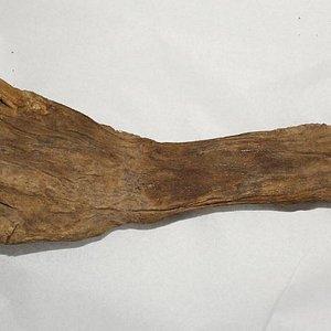 braco humano da epoca da guerra civil