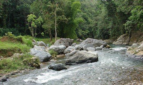 Rio Esperanza - Arecibo
