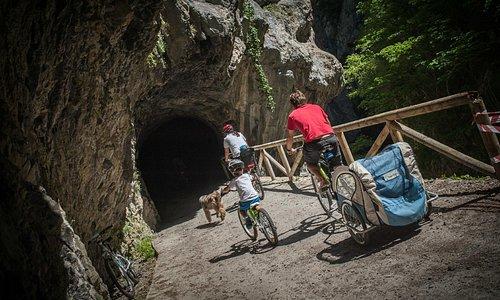 Descenso en bici de la Senda del Oso con TeverAstur