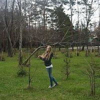 Парк культуры и отдыха им. И.В. Коротеева