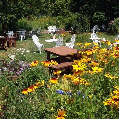 白いベンチが点在してるので、休みたい時にすぐ座われます。日陰は少ないので、日傘か帽子があるとゆっくりガーデンを散歩できますよ。。。(#^.^#)