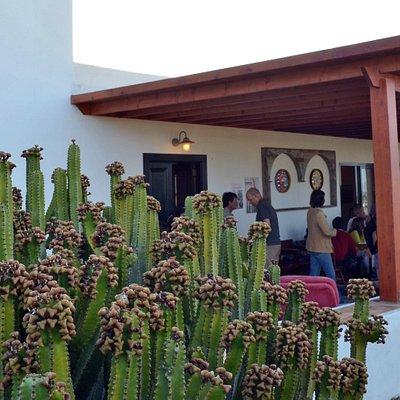 Terraza de la galería de arte ENMALA.