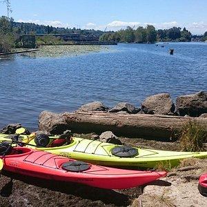 Taking a break by Lake Washington.