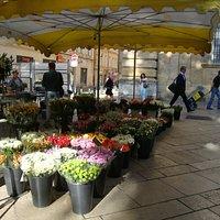 Banca de flores