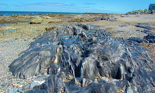 Beach rocks { Basalt } Baie Aux Sables Gaspe