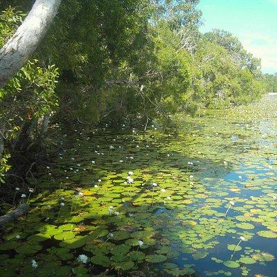 Mulbabidgee Keatings Lagoon