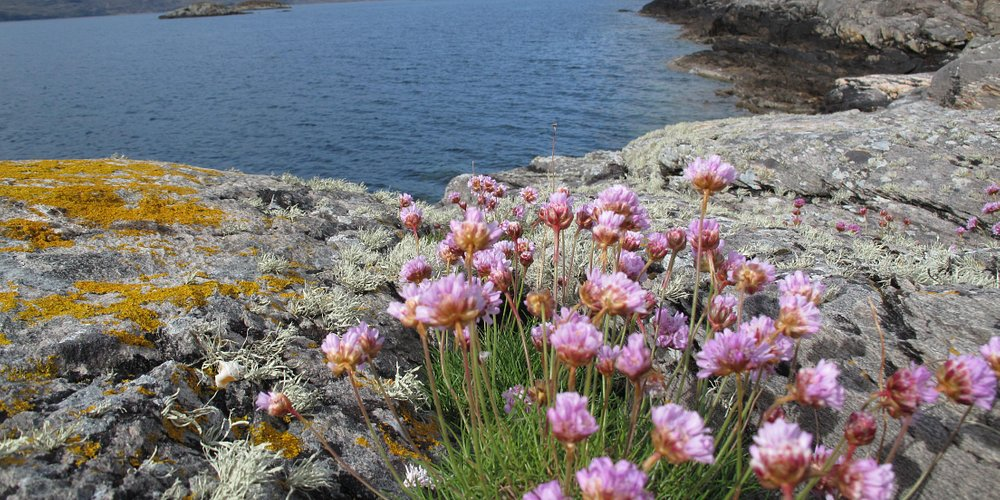 Overlooking Loch Carron 1
