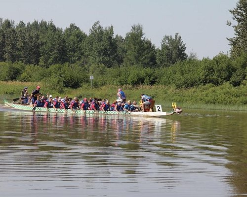 Close view of one of the teams.