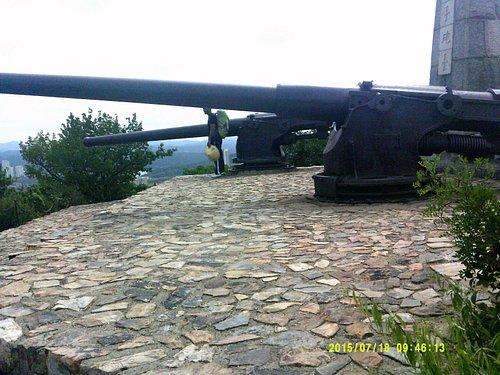 wangtai fort - main gun