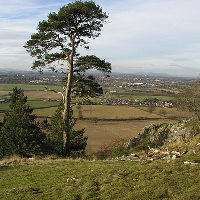 The view from the toposcope at Haughmond Hill.