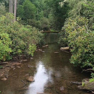 More stream views, Lots of people fish here