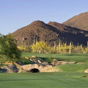 A true golf experience on our North and South Courses