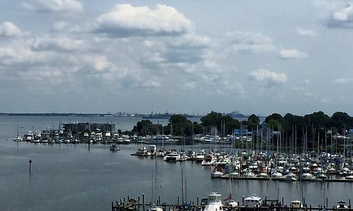 View of harbour from observation deck