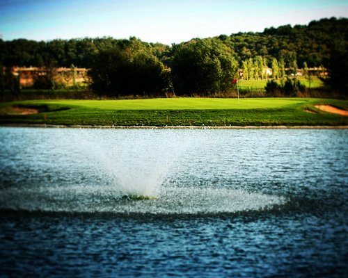 Island Green, Championship Course. It's green or it's water.