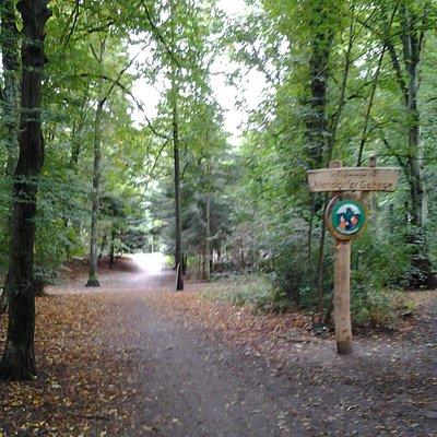 Ein Eingangsweg