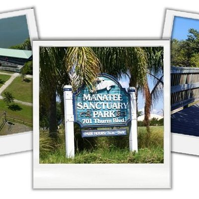 The Beautiful Manatee Sanctuary Park