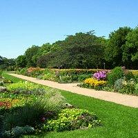 Pathways through the gardens.