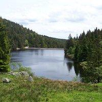 Lac des Truites ou du Forlet