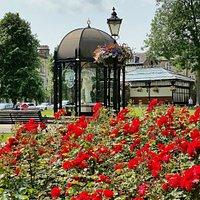 Crescent Gardens in bloom