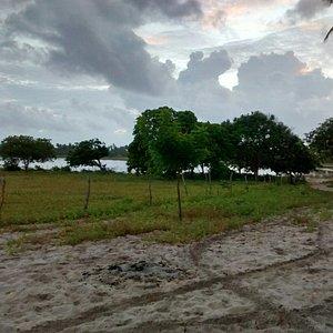 Lagoa do mato, Aranaú