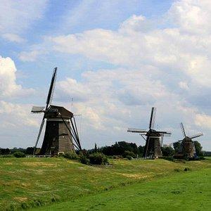All three windmills