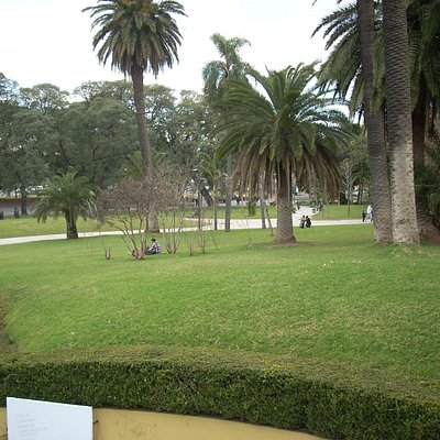 Vista de la plaza desde la terraza