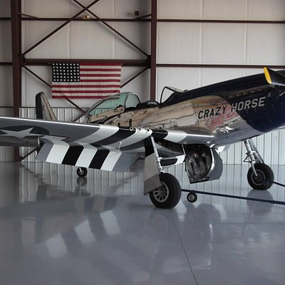 Mustang - there are two and can be seen from across the main museum