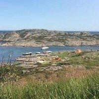 Sommerdag på Randøya