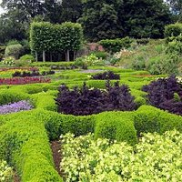 Parterre in summer