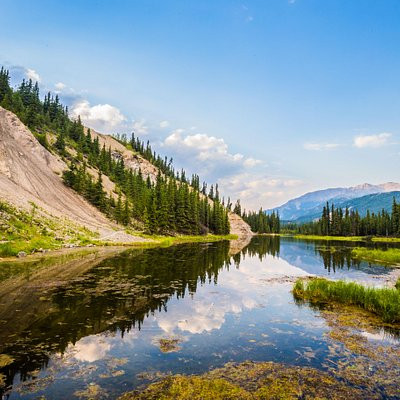 Horseshoe Lake, A must do hike @ Denali National Park