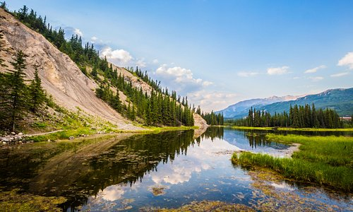 Horseshoe Lake, A must do hike @ Denali National Park