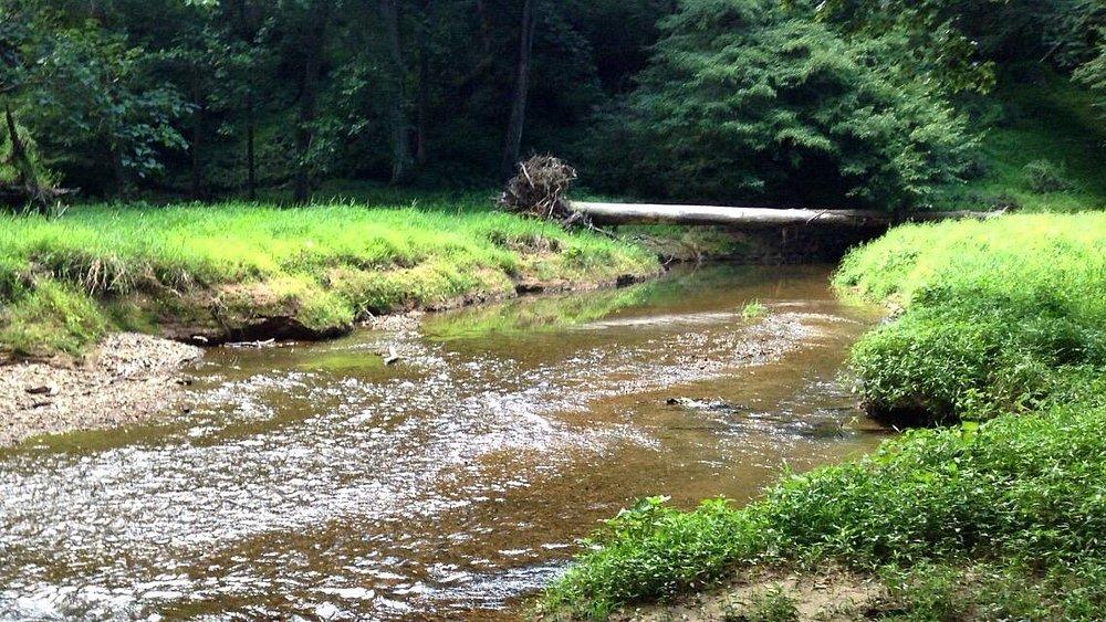 Great Seneca Stream Valley Park