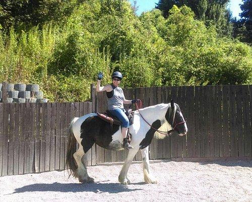 Wo Reiten Spaß macht und auf die Pferde geachtet wird. Ohne Gebiss und Sporen